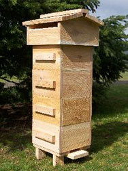 Red Cedar Warre Garden Hive