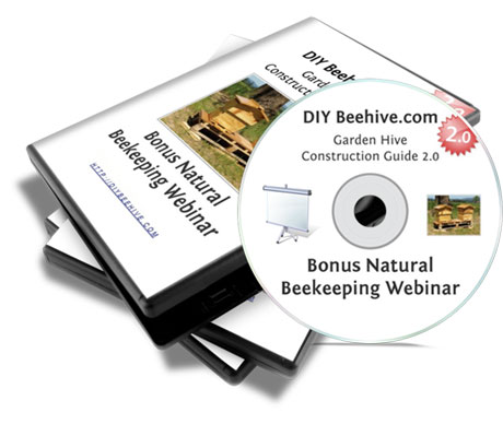 Bonus Natural Beekeeping Webinar and Mindmaps